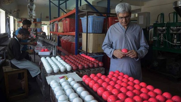 cricket-pink-ball-from-pakistan-3