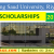 King Saud University (KSU) Scholarships for International Students 2017