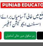 School Wise Educators and AEO's Seats 2016 2017 for All Distrcits of Punjab