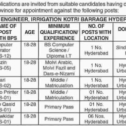 Jobs in Irrigation Department Sindh 25-02-2017
