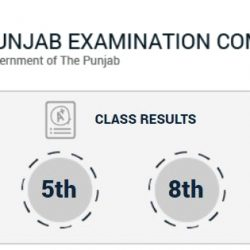 PEC Announces Result of 5th and 8th Class of Year 2017