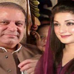PM Nawaz Sharif will not step down, Maryam Nawaz